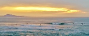 Biarritz Shop Surf